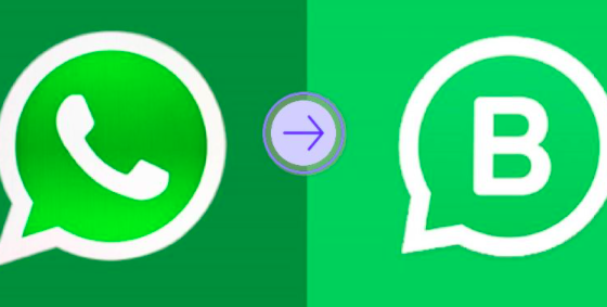 whatsapp business para tu negocio